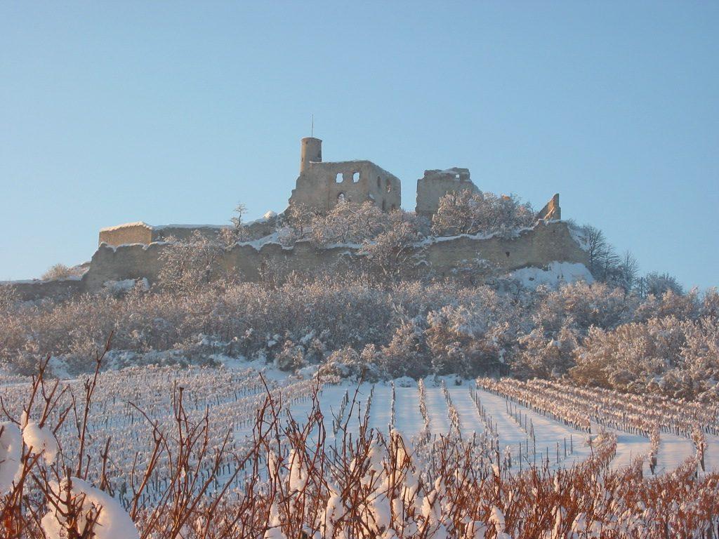Burgruine Falkenstein im Winter